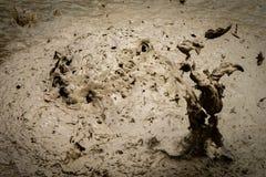 起泡的热量泥水池,罗托路亚 免版税库存照片