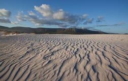 起波纹的沙丘 免版税库存照片