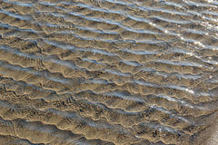 起波纹的浅海水背景  免版税库存图片