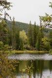起波纹的湖和秋天颜色 免版税库存照片
