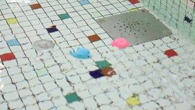 起波纹的水和玩具 影视素材