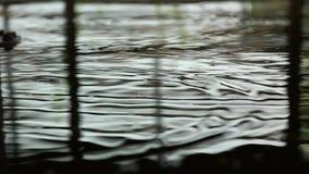 起波纹的水 股票视频