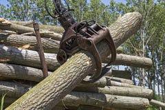 起重机劫掠的堆木日志-木材产业 库存照片