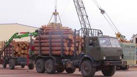 起重机卸载从卡车,林业起重机的日志卸载日志 股票视频
