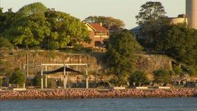 起重机和房子有码头的 股票视频