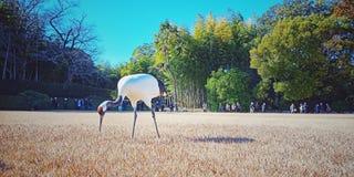 起重机在冈山后乐园庭院,日本里 免版税库存照片