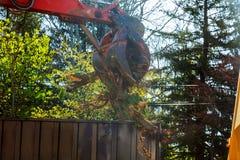起重机操作器forvader采取了大日志和装载它在平台 在迷离有木头的背景拖车上 库存图片