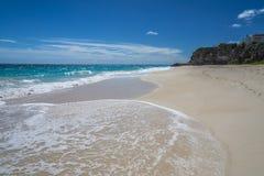 起重机海滩加勒比巴巴多斯 免版税库存图片