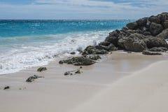 起重机海滩加勒比巴巴多斯 库存图片