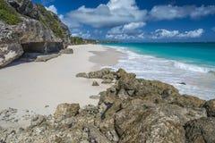 起重机海滩巴巴多斯印度西部 免版税库存照片