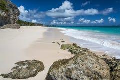 起重机海滩巴巴多斯印度西部 免版税库存图片