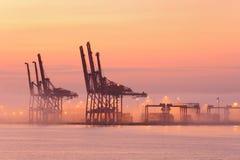 起重机雾早晨端口温哥华 免版税库存图片