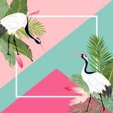 起重机鸟和热带叶子夏天横幅、图表背景、异乎寻常的花卉邀请、飞行物或者卡片 首页 向量例证