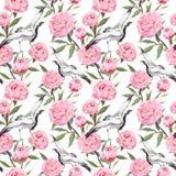 起重机鸟舞蹈,桃红色牡丹花 背景花卉重复 水彩 库存照片