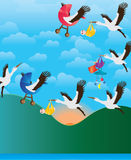 起重机鸟运载的婴孩早晨飞行 免版税库存图片