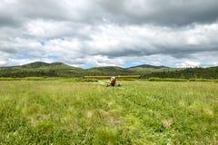 起飞在风景国家跑道的小航空器 免版税库存图片