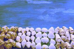 超现实主义结构的一套壳向小卵石星猬木背景老灰色被佩带的拷贝空间扔石头 免版税库存照片