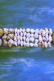 超现实主义结构的一套壳向小卵石星猬木背景老灰色被佩带的拷贝空间扔石头 免版税库存图片