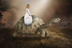 超现实的女孩,乌龟,草龟,自然,和平,爱 免版税库存照片