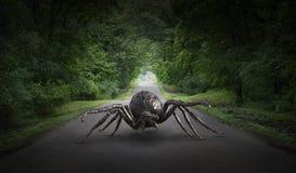 超现实的巨型蜘蛛,路,高速公路 免版税图库摄影