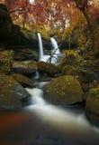 超现实的瀑布是美丽的秋天森林 库存图片