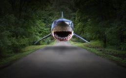 超现实的鲨鱼,路,森林,自然 免版税库存图片