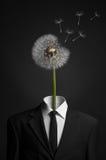超现实主义和企业题目:蒲公英而不是一个人的头状花序在黑暗的背景的一套黑衣服的在演播室 免版税图库摄影