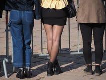 超短裙和腿在黑裤袜 库存照片