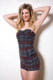 超短裙的美丽的性感的少妇 免版税库存照片