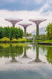 超级树树丛在滨海湾公园 免版税库存照片