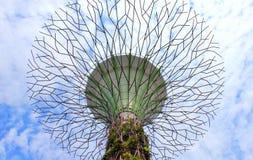 超级树树丛 免版税库存照片