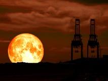 超级纯种月亮红色天空和剪影crain在海口 免版税库存图片
