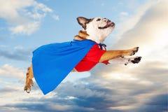 超级英雄狗飞行通过云彩 免版税库存照片
