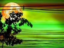 超级血液月亮和剪影供给电线和树动力 图库摄影