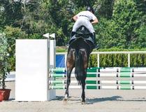 超越障碍马术比赛竞争、海湾马和车手在白色一致执行跳过辔 库存图片