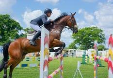 超越障碍马术比赛 侧视图,马和车手飞跃篱芭以速度 免版税库存照片