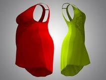 超重肥胖女性礼服成套装备对亭亭玉立的适合的身体健康 皇族释放例证