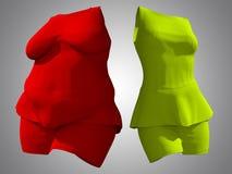 超重肥胖女性礼服成套装备对亭亭玉立的适合的身体健康 库存例证