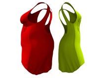 超重肥胖女性礼服成套装备对亭亭玉立的适合的身体健康 向量例证