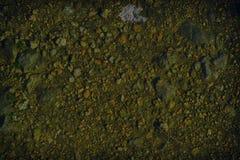 超黄色地面纹理,沙子表面,石背景,有益于设计元素 库存图片