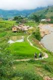 越南乡下鸟瞰图有旅游和地方wom的 库存图片