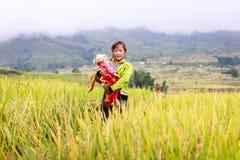 越南人米大阳台河边的o Hmong孩子在Y TY镇 图库摄影