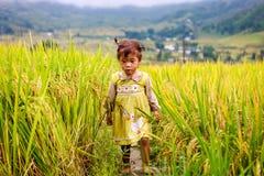 越南人米大阳台河边的o Hmong孩子在Y TY镇 免版税图库摄影