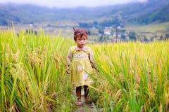 越南人米大阳台河边的o Hmong孩子在Y TY镇 库存图片