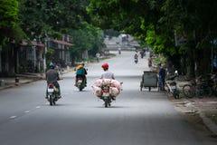 越南人运输在摩托车的小猪在市场上 免版税图库摄影