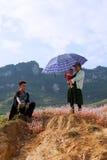 越南人Hmong采取紫色花的少数家庭一基于 免版税库存图片
