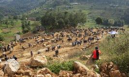 越南农场主销售和买水牛农业活动的 免版税库存图片