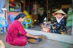 越南妇女 免版税库存照片