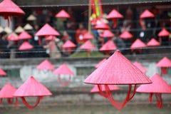 越南帽子在河内文学5 Templa  库存照片