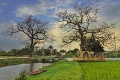 越南村庄典型的风景  图库摄影